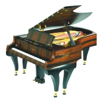 Акустический рояль Petrof P 210 grand piano for Petr Krsak